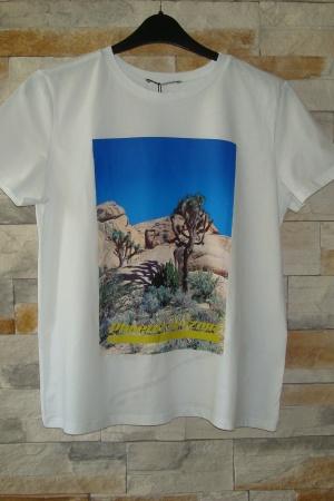 Женская футболка с принтом от Зара (Испания) - Зара ZR0678-cl-L