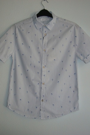 Рубашка для мальчика (с принтом - фламинго)  - Зара ZR0723-cl-164