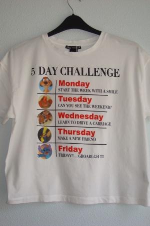 Крутая женская футболка Зара - Зара ZR0796*-сl-S