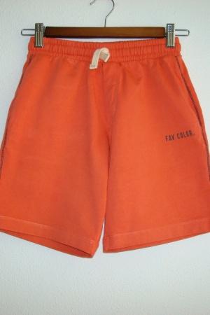 Яркие трикотажные шорты для мальчиков от Зара Испания - Зара ZR0882-cl-140
